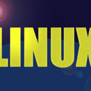 Budget Linux Reseller Hosting USA Based Server-4